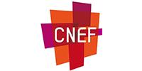 CNEF_200x100